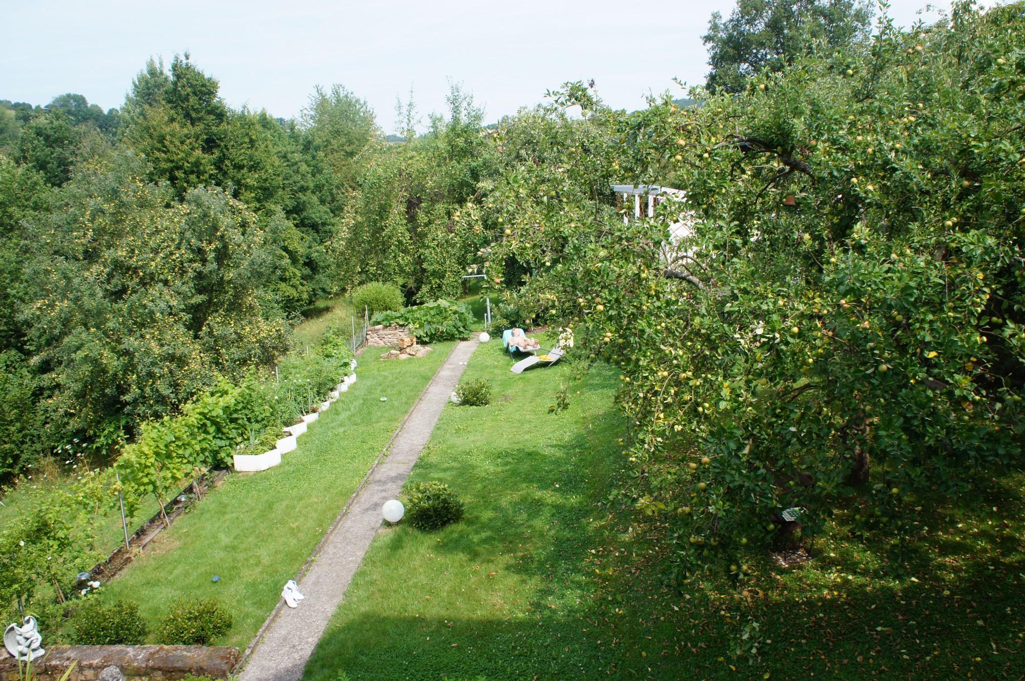 Ausblick von Einzelzimmer in Garten